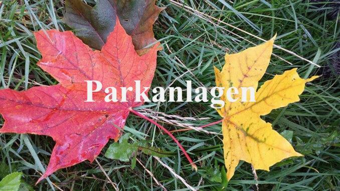 Laubfärbung Parkanlagen Görlitz
