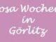 Rosa Wochen in Görlitz