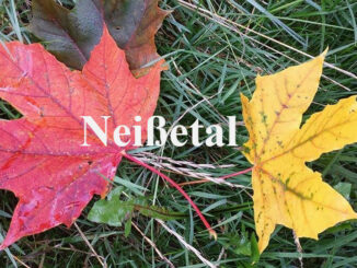 Herbstfärbung im Neißetal Görlitz