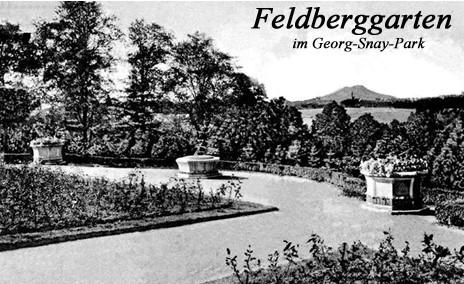 Postkarte Feldberggarten