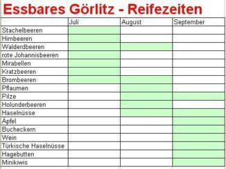 Reifekalender Görlitz