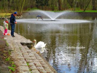 snaypark-fontäne-ententeich-zgorzelec