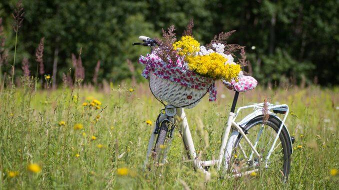 Radfahrer Görlitz
