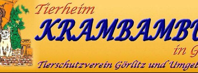 Tierheim Krambambuli Görlitz