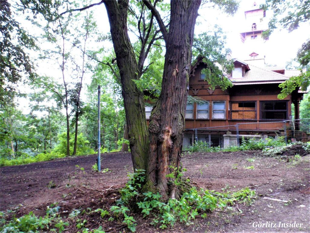 Garten-Weinberghaus-5.7.2021
