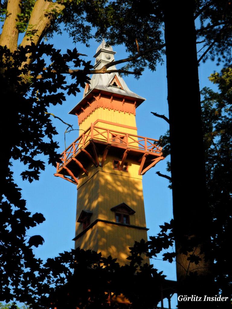 Weinbergturm-im-Abendlicht-5.7.2021